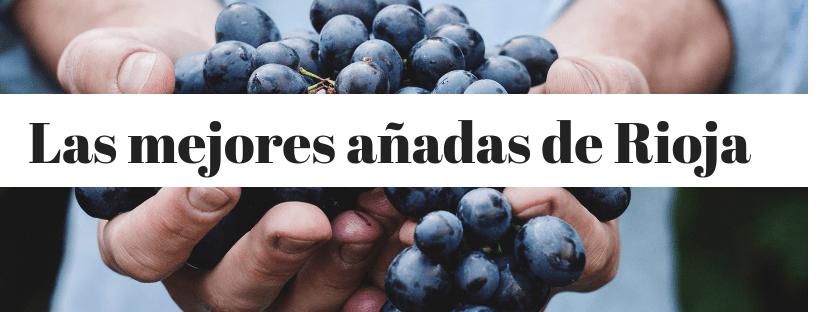 Las Mejores Añadas De Vinos De Rioja