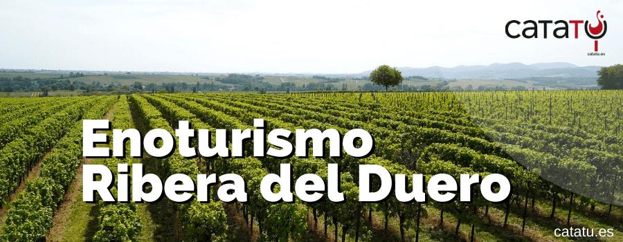 Enoturismo Ribera Del Duero