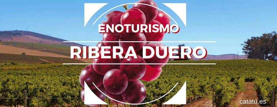 Ruta De Enoturismo Por La Ribera Del Duero