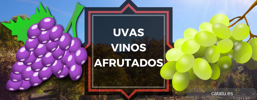 Tipos Uvas Vinos Afrutados