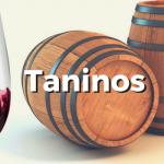 ¿Qué son los taninos del vino? Sus propiedades, beneficios…