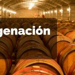 ¿Qué es la Microoxigenación del Vino? Explicación y su tipos