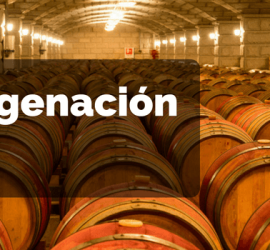 micro oxigenacion vino