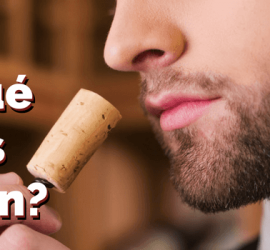 por que olemos tapon vino