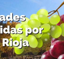 variedades uva permitidas DOC Rioja