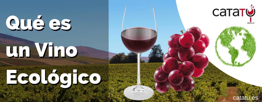 Que Es Un Vino Ecologico