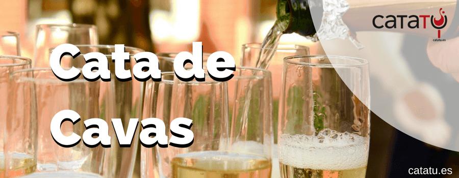 El cava es un vino. Con ciertas peculiaridades como su nombre indica al ser espumoso. Vamos a describir el proceso de la cata del cava, ya sea blanco o cava rosado.
