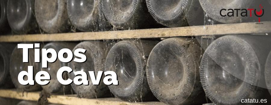 Qué Tipos De Cava Existen Según Crianza, Azúcar, Variedades De Uva Y Origen