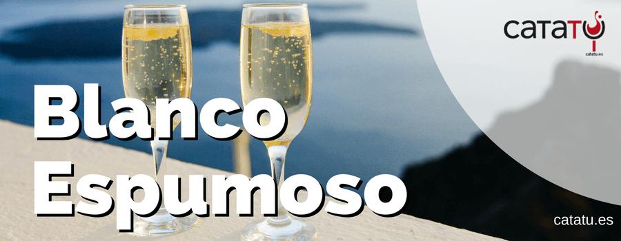 Tipos De Vino Blanco Espumoso Y Cómo Se Elabora