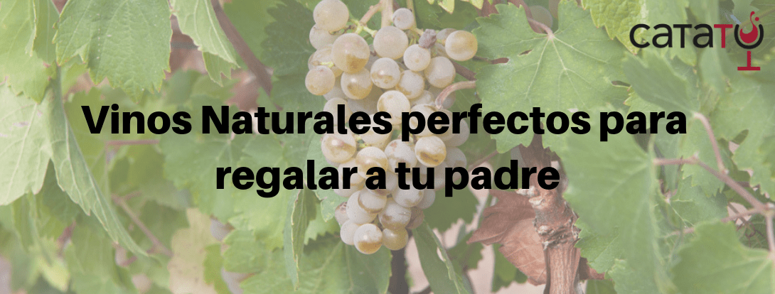 Vino Natural Exclusivo Padre