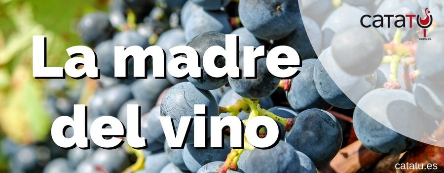 La madre del vino