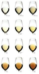 colores vinos blancos