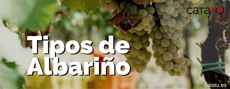 Tipos De Vino Albariño. Cómo Son Los Tipos De Vino Elaborados Con Uva Albariño