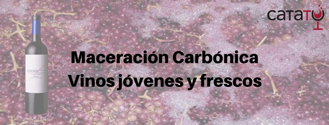 Maceracion Carbonica Min