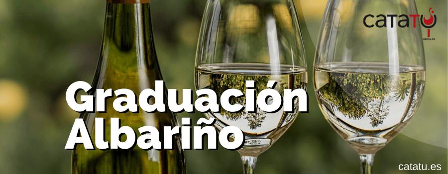 Graduacion De Los Vinos Albarino
