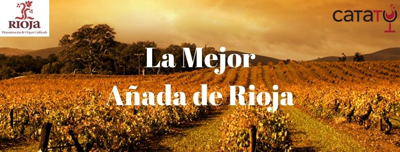 La mejor añada de Rioja