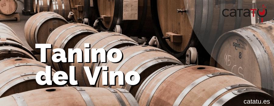 Los Taninos Del Vino Y Sus Caracteristicas