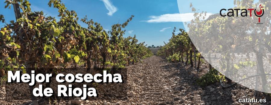 Mejor Cosecha Rioja
