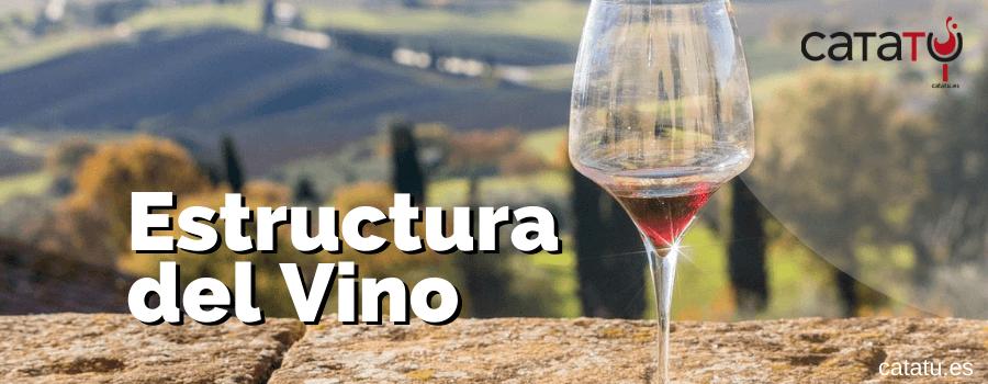 Estructura Del Vino Y Sus Elementos