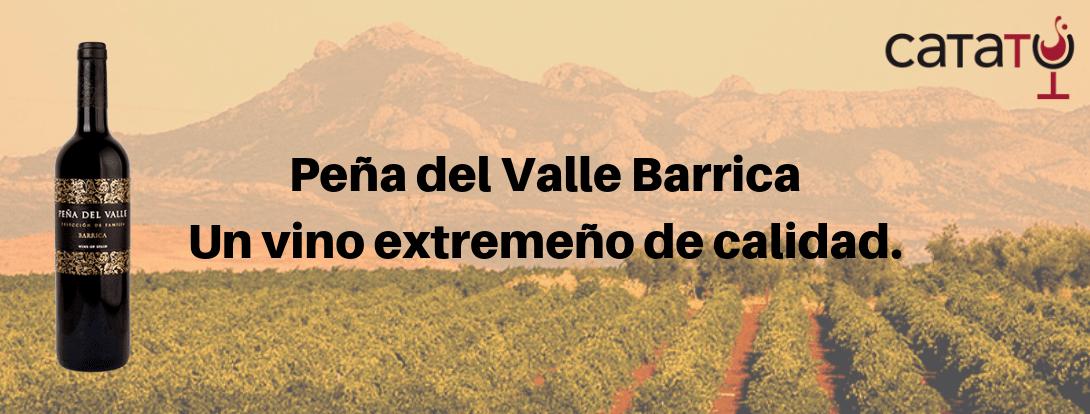 Peña Del Valle Barrica 2016, Un Vino De Museo