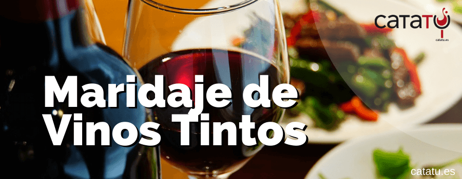 Maridaje De Vinos Tintos