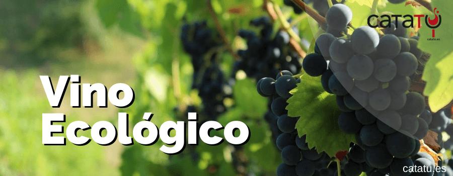 Qué Es El Vino Ecológico. Su Origen, Elaboración, Transporte Y Embotellado