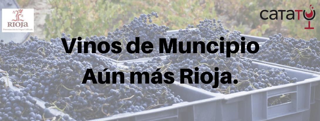 Vinos De Municipio Min