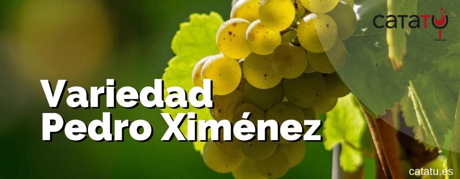 Variedad Pedro Ximenez