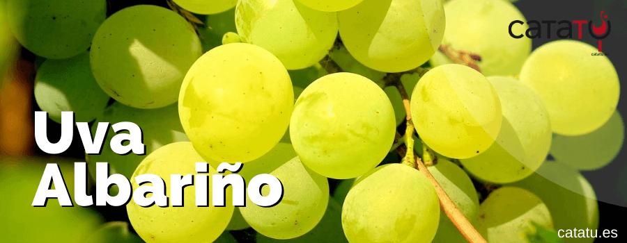 Uva Albarino