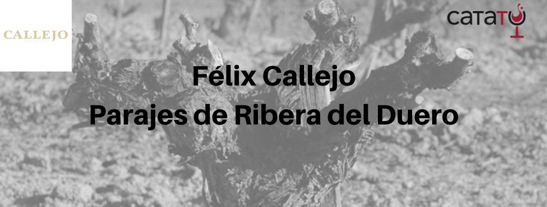 Félix Callejo: Parajes De Ribera Del Duero