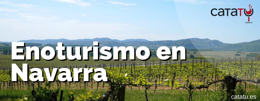 Enoturismo En Navarra. Ideas De Rutas, Visitas Y Actividades