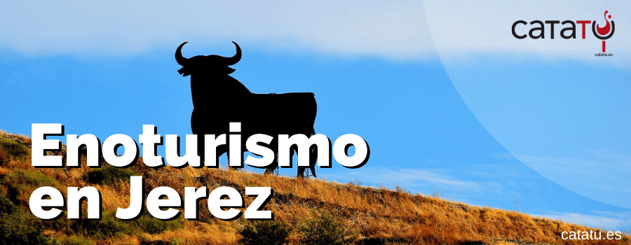 Enoturismo En Jerez