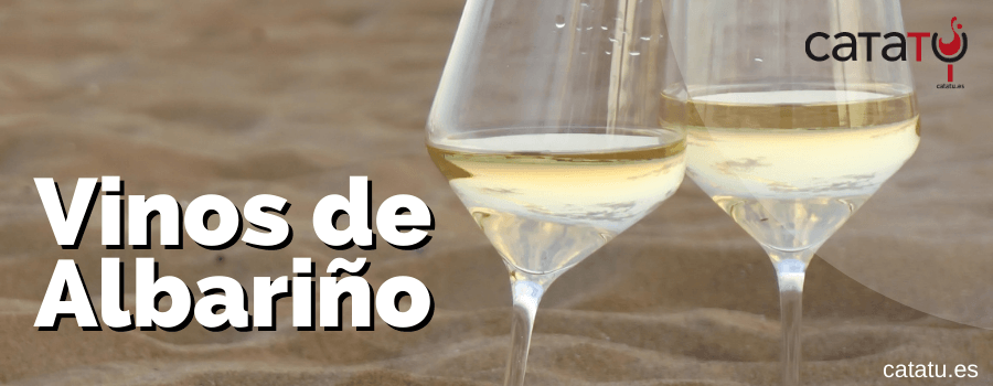vinos de albarino