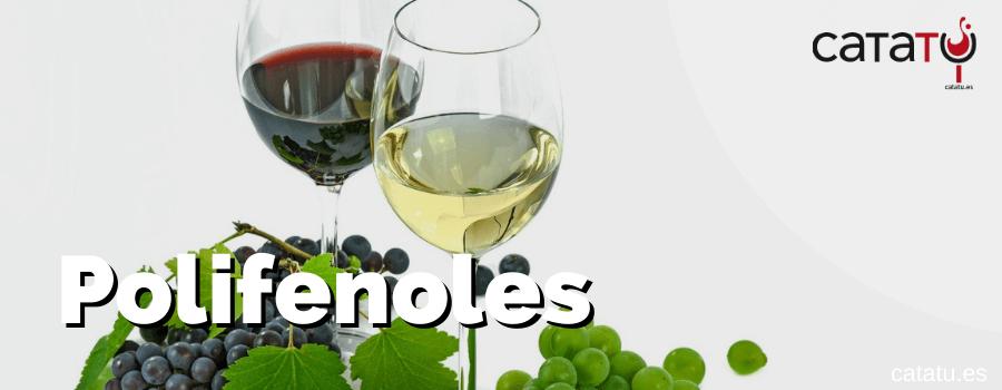 Polifenoles del vino