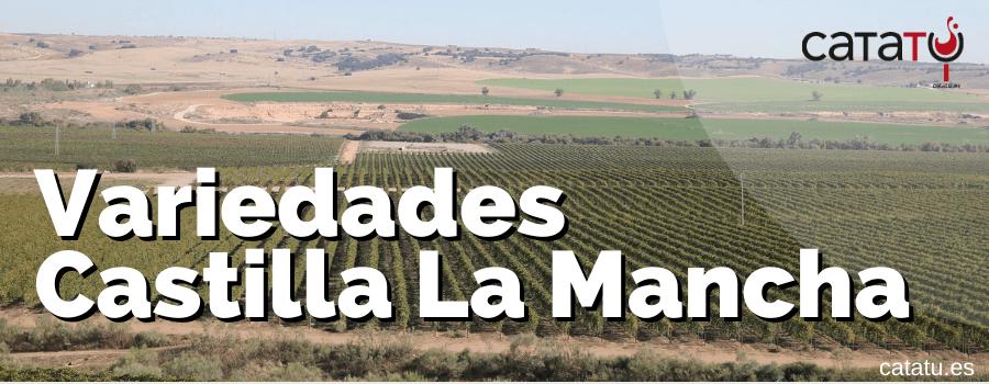 Variedades Uva Castilla La Mancha
